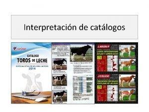 Interpretacin de catlogos Interpretacin de catlogos La vaca