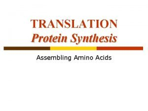 TRANSLATION Protein Synthesis Assembling Amino Acids Protein Structure