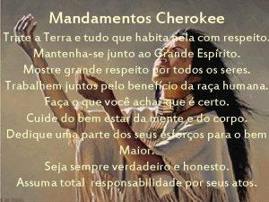 Mandamentos Cherokee Trate a Terra e tudo que