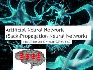 Artificial Neural Network BackPropagation Neural Network Yusuf Hendrawan