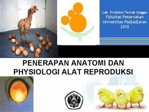 Lab Produksi Ternak Unggas Fakultas Peternakan Universitas Padjadjaran