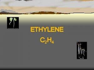 ETHYLENE C 2 H 4 Plant Hormone Regulatory