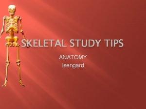 SKELETAL STUDY TIPS ANATOMY Isengard Study Plan of