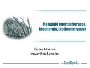 Megjul energiaforrsok bioenergia biozemanyagok Rczey Istvnn ireczeymail bme
