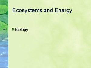 Ecosystems and Energy Biology Vocabulary Primary Producer Primary
