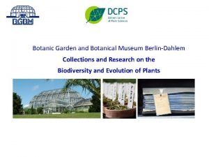 Botanic Garden and Botanical Museum BerlinDahlem Collections and