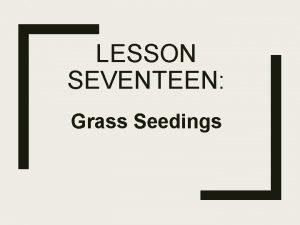 LESSON SEVENTEEN Grass Seedings Types of Grass Seedings
