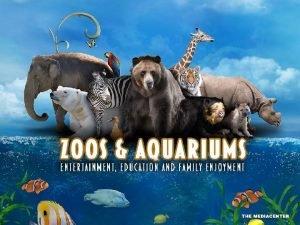 Destination Drivers As leisureactivity destinations zoos and aquariums