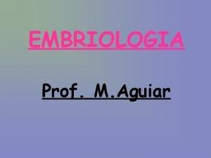 EMBRIOLOGIA Prof M Aguiar EMBRIOLOGIA Definies Tipos de
