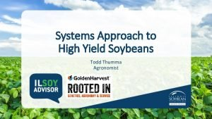 Systems Approach to High Yield Soybeans Todd Thumma