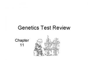 Genetics Test Review Chapter 11 Match the Scientists
