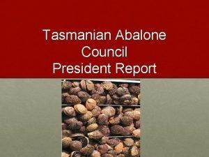 Tasmanian Abalone Council President Report 2013 2014 TACL