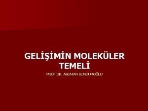 GELMN MOLEKLER TEMEL PROF DR ASUMAN SUNGUROLU n