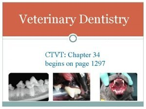 Veterinary Dentistry CTVT Chapter 34 begins on page