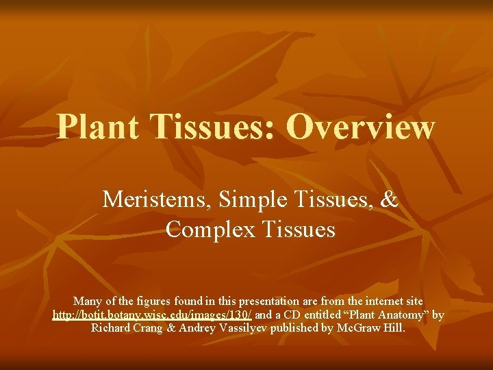Plant Tissues Overview Meristems Simple Tissues Complex Tissues