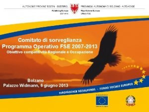 Comitato di sorveglianza Programma Operativo FSE 2007 2013