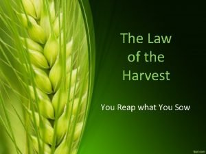 The Law of the Harvest You Reap what