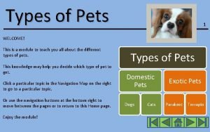 Types of Pets 1 WELCOME This is a