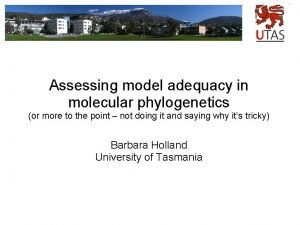 Assessing model adequacy in molecular phylogenetics or more