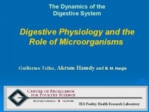 The Dynamics of the Digestive System Digestive Physiology