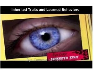 Inherited Traits and Learned Behaviors By Cammies Corner