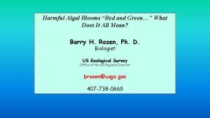Harmful Algal Blooms Red and Green What Does