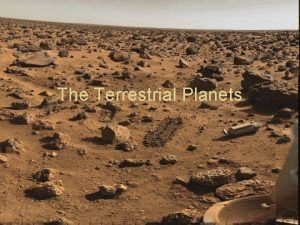 The Terrestrial Planets Terrestrial Planet Surfaces How do