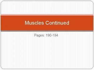 Muscles Continued Pages 190 194 Skeletal Muscle Action