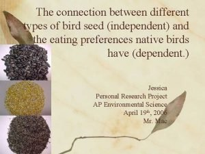 The connection between different types of bird seed