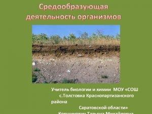 http voroninsky ruimagesgallery13212607984625 jpg http commons wikimedia orgwikiFile