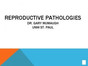 REPRODUCTIVE PATHOLOGIES DR GARY MUMAUGH UNW ST PAUL