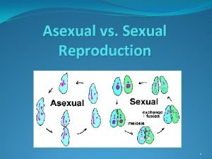 Asexual vs Sexual Reproduction 1 Asexual Reproduction Requires