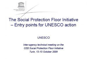 The Social Protection Floor Initiative Entry points for