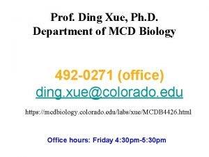 Prof Ding Xue Ph D Department of MCD