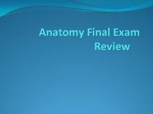 Anatomy Final Exam Review Anterior Anterior front or