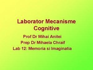 Laborator Mecanisme Cognitive Prof Dr Mihai Anitei Prep