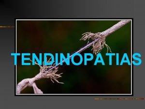 TENDINOPATIAS TENDINOPATIAS Presentado por Sr Toni Bov D
