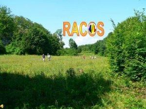 Le village de Racos est une commune roumaine