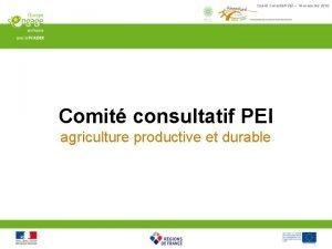 Comit Consultatif PEI 18 novembre 2016 Comit consultatif