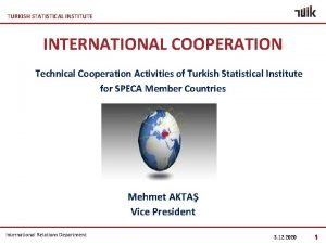 TURKISH STATISTICAL INSTITUTE INTERNATIONAL COOPERATION Technical Cooperation Activities