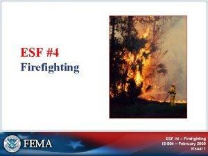 ESF 4 Firefighting ESF 4 Firefighting IS804 February
