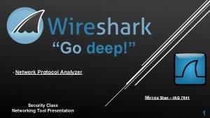 Go deep Network Protocol Analyzer Mircea Stan IAG