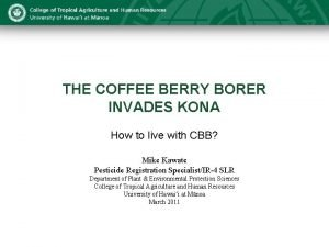 THE COFFEE BERRY BORER INVADES KONA How to
