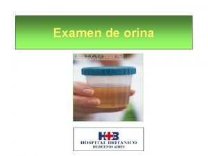 Examen de orina El examen de orina efectuado