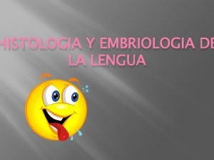 HISTOLOGIA Y EMBRIOLOGIA DE LA LENGUA LENGUA Estructura