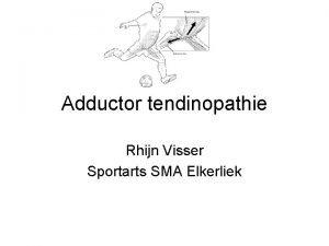 Adductor tendinopathie Rhijn Visser Sportarts SMA Elkerliek Adductoren