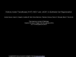 Histone Acetyl Transferase HAT HBO 1 and JADE