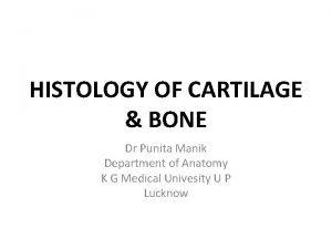 HISTOLOGY OF CARTILAGE BONE Dr Punita Manik Department
