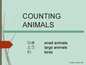 COUNTING ANIMALS small animals large animals birds Created