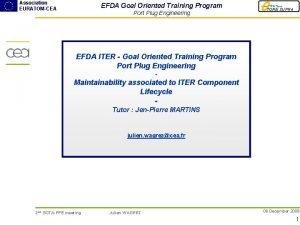Association EURATOMCEA EFDA Goal Oriented Training Program Port